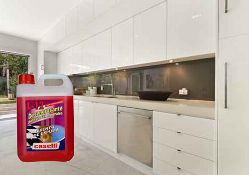 detergentes industriales caselli